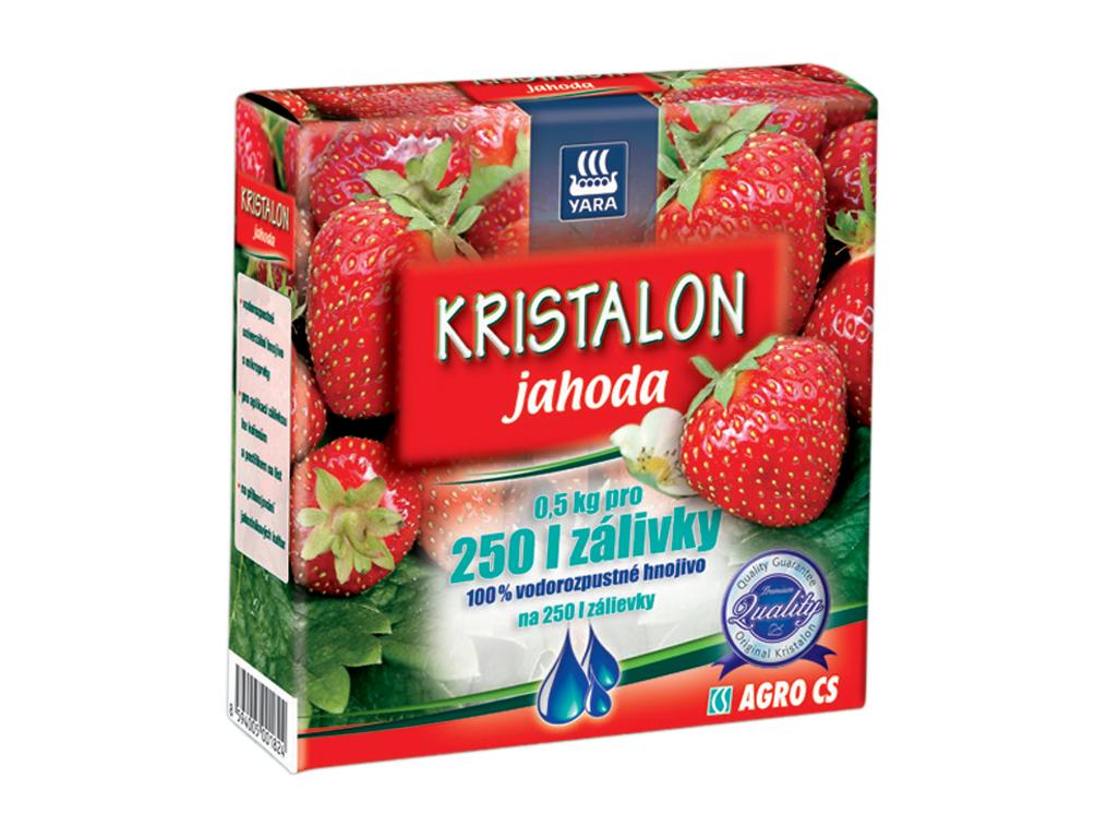 AGRO Hnojivo na JAHODY 500 g Kristalon 0386