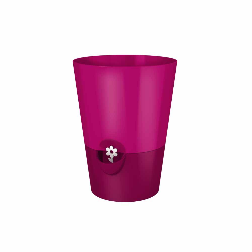 EMSA Samozavlažovací květináč na bylinky 1,2 l růžový Fresh Herbs Emsa 514246